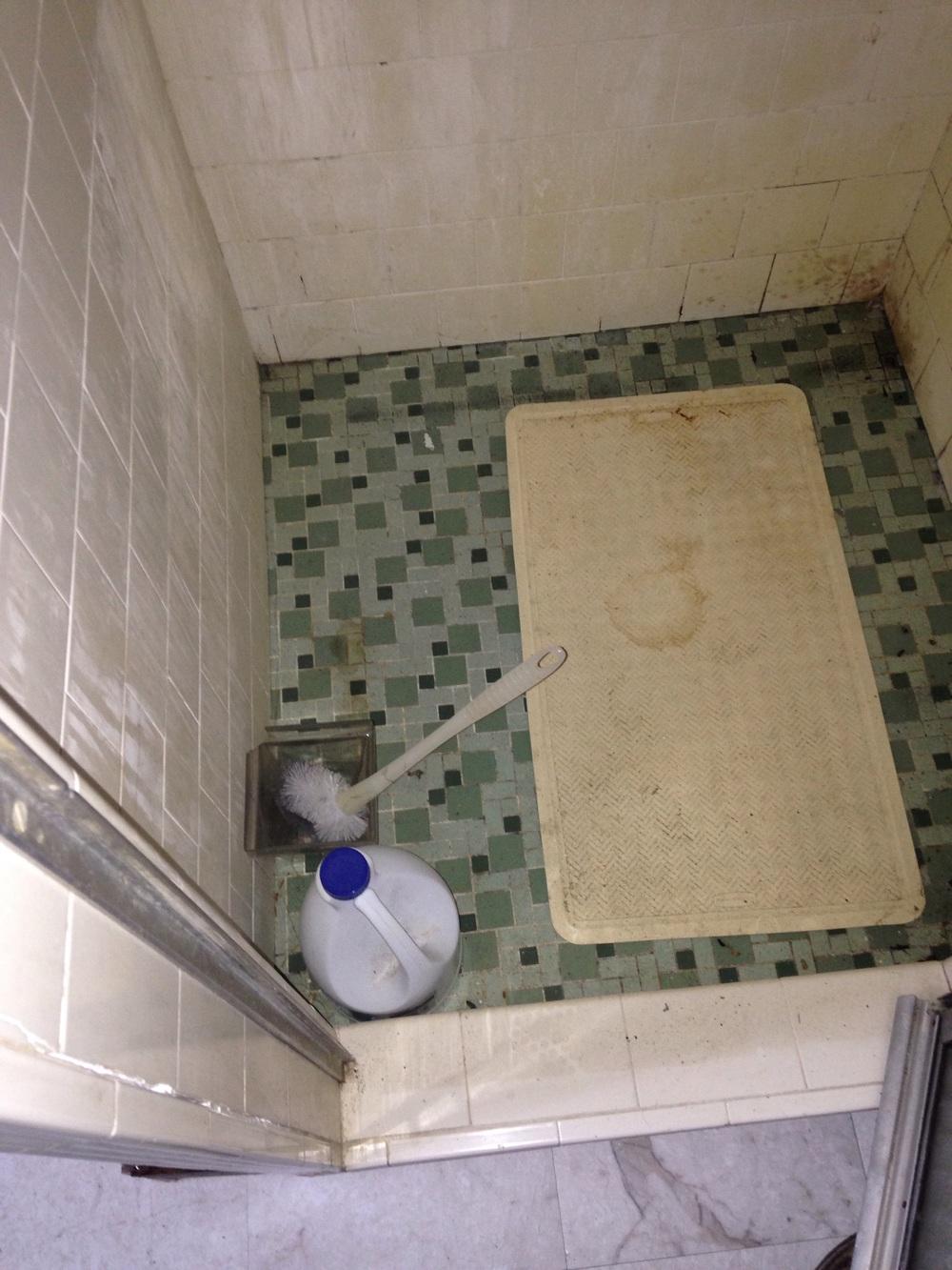 '60s mosaic shower pan floor