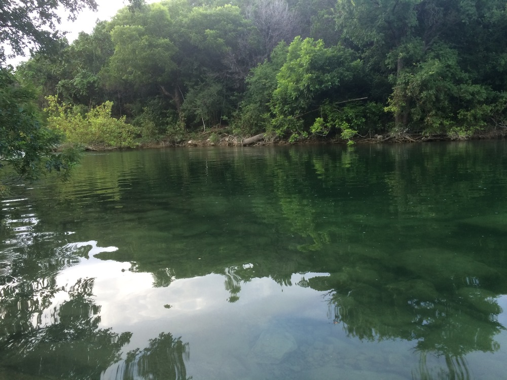 The greenbelt of Austin, TX, where I've lived for 7 years