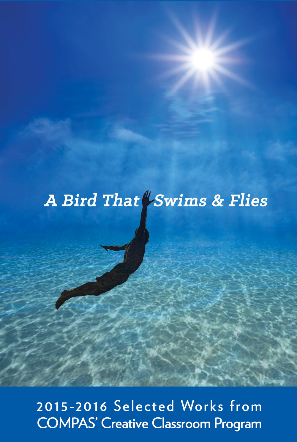 ABirdThatSwimsAndFlies_BookCover.jpg