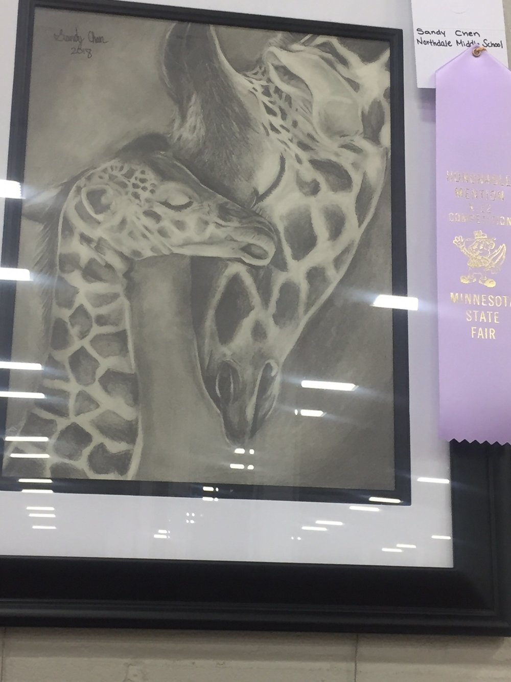Grade 6 - Sandy Chen,Northdale Middle SchoolPencil Drawing-Giraffe