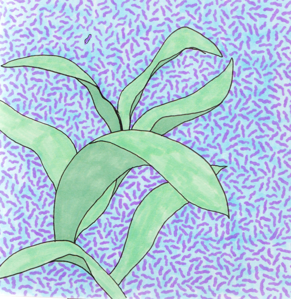 PlantPattern.jpg