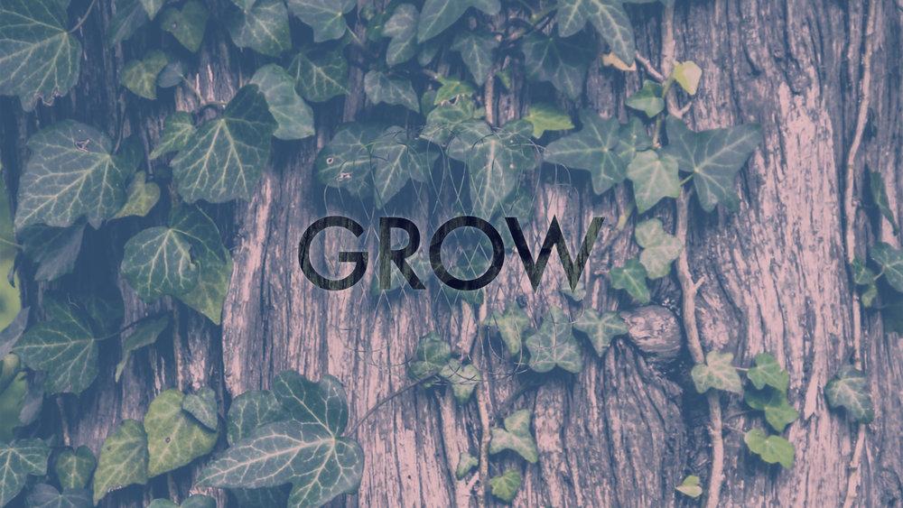 Grow (2017)