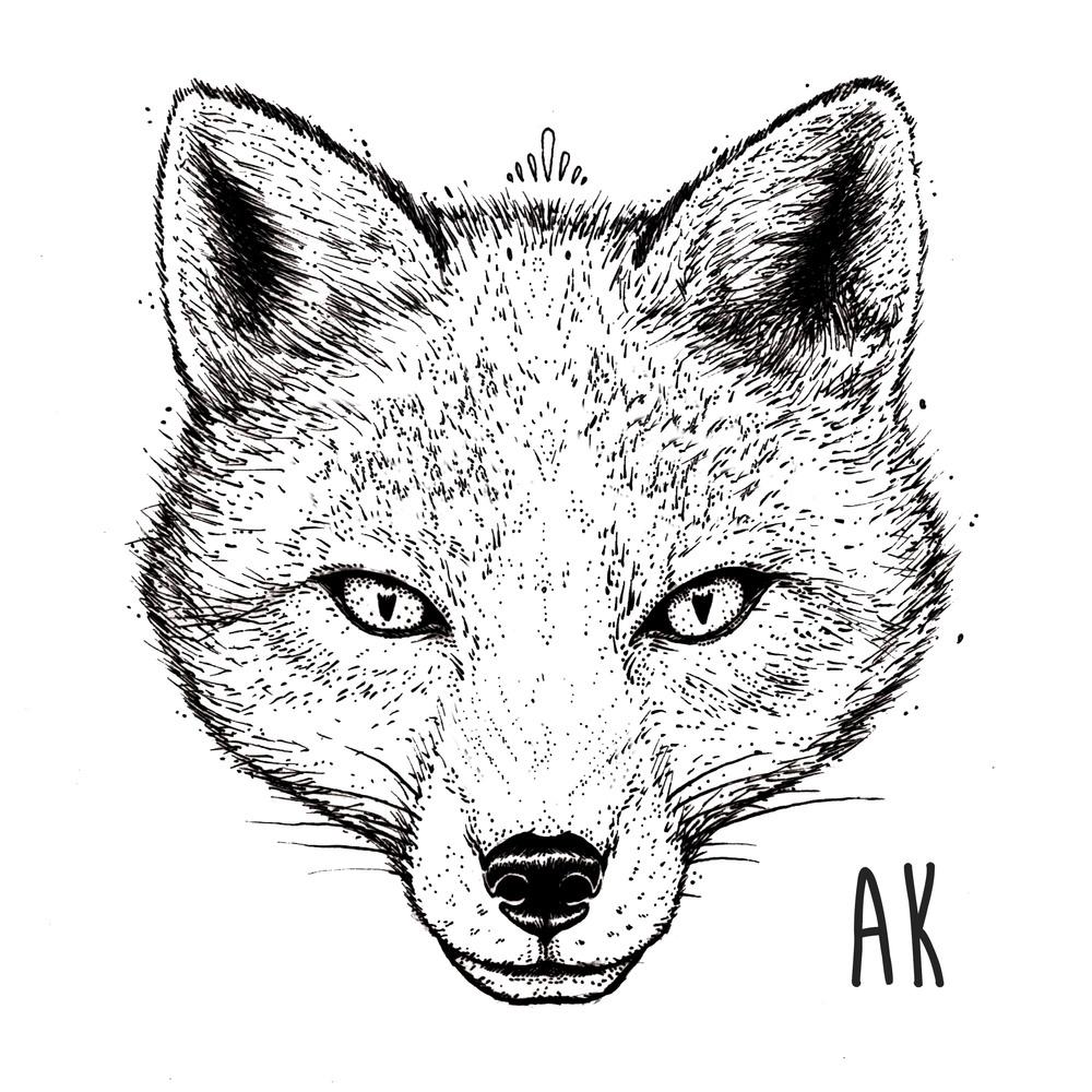 Fox Logo Portfolio.jpg