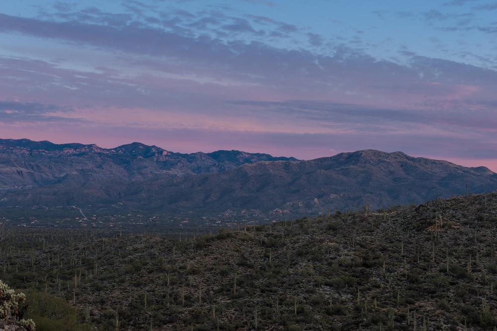 saguaro-sunrise-4.jpg