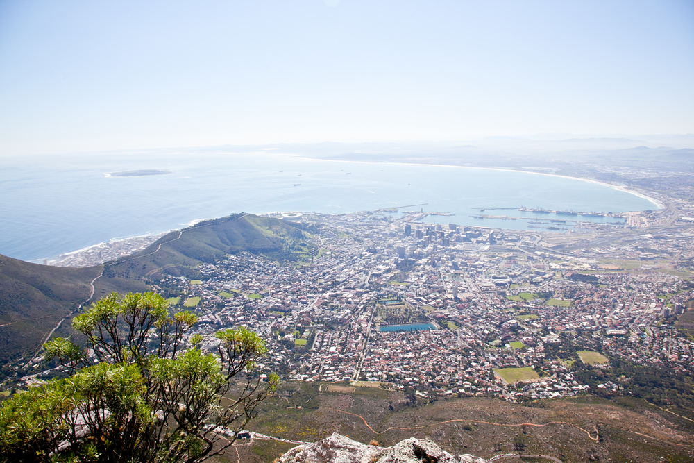 IMG_4663-table-mountain-cape-town-south-africa-trisa-taro.jpg