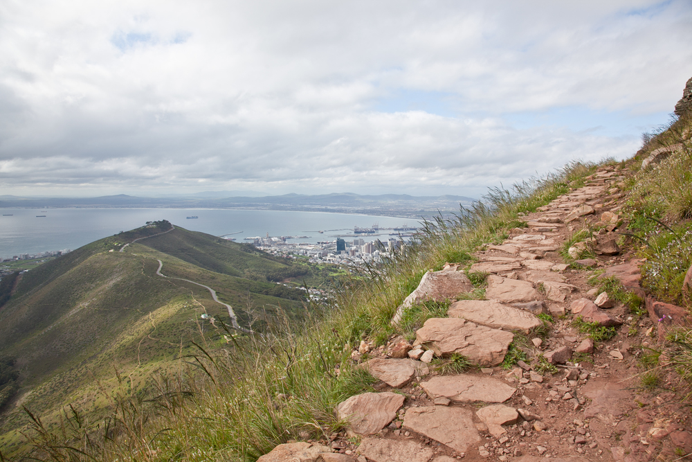IMG_5035-hiking-lions-head-cape-town-trisa-taro.jpg