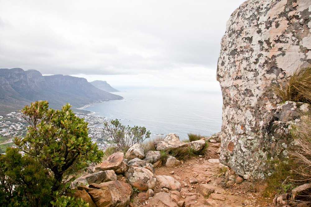 IMG_5051-hiking-lions-head-cape-town-trisa-taro.jpg