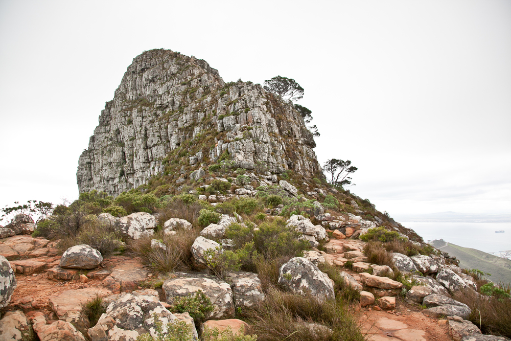 IMG_5058-hiking-lions-head-cape-town-trisa-taro.jpg
