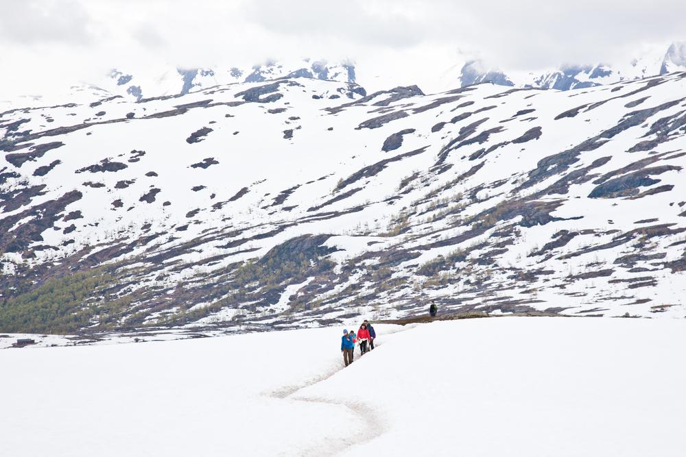 IMG_3656-trolltunga-norway-hiking-trisa-taro.jpg