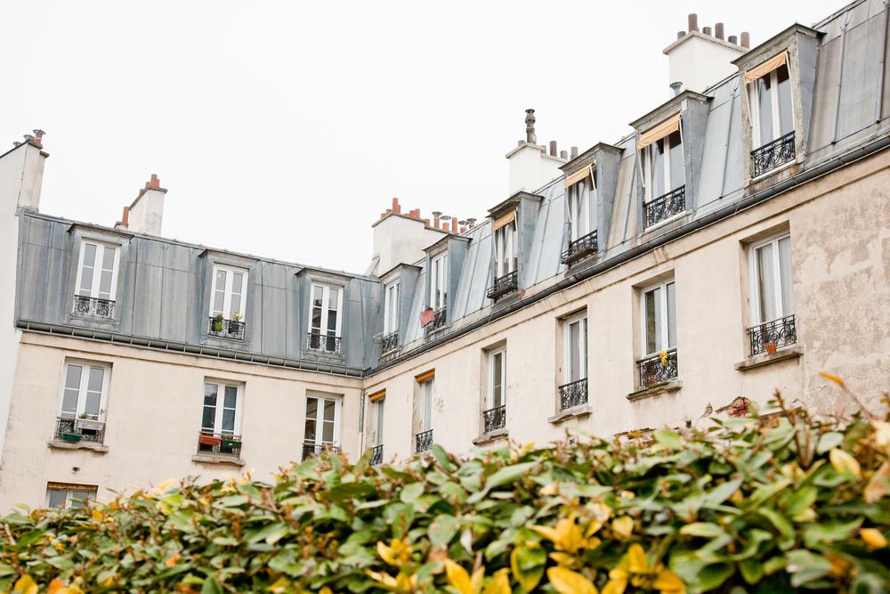 trisa-taro-paris-france-IMG_2413.jpg