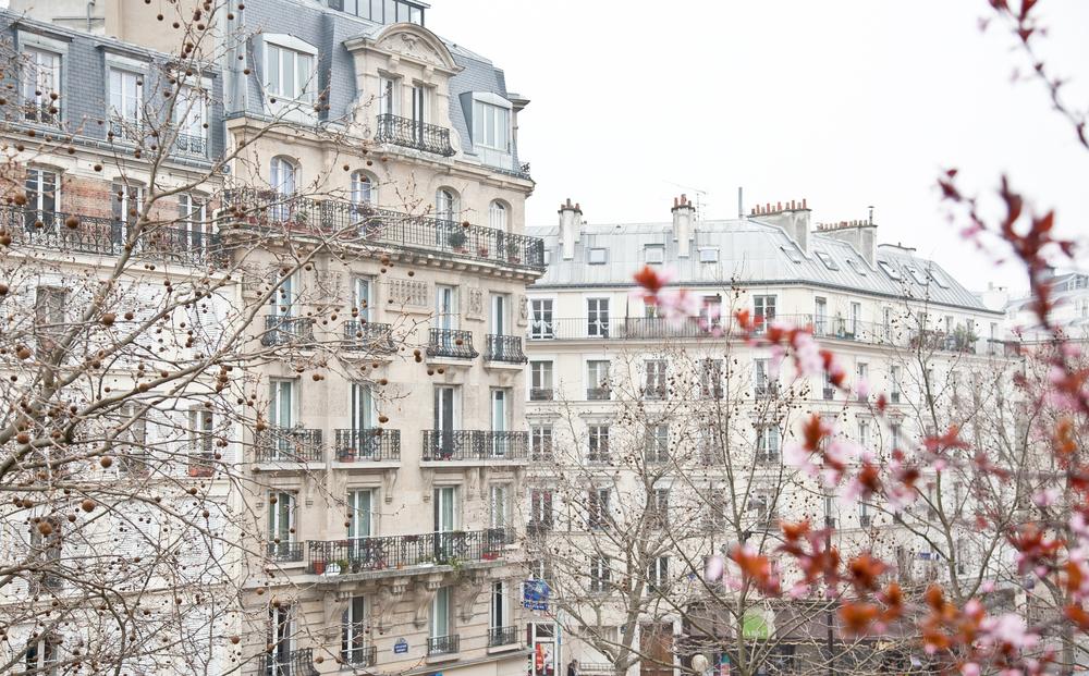 trisa-taro-paris-france-IMG_2437.jpg