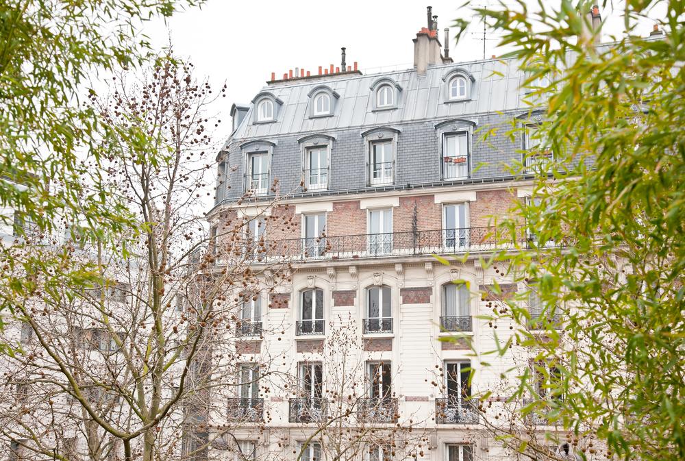 trisa-taro-paris-france-IMG_2439.jpg