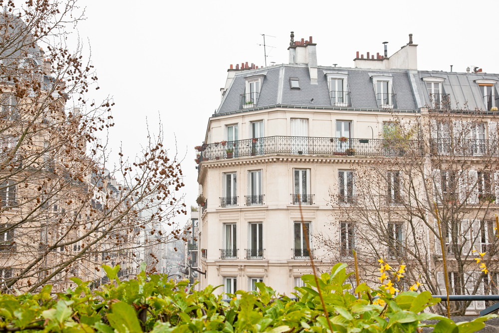 trisa-taro-paris-france-IMG_2444.jpg