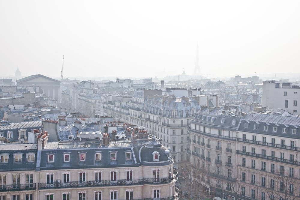 trisa-taro-paris-france-IMG_2496.jpg