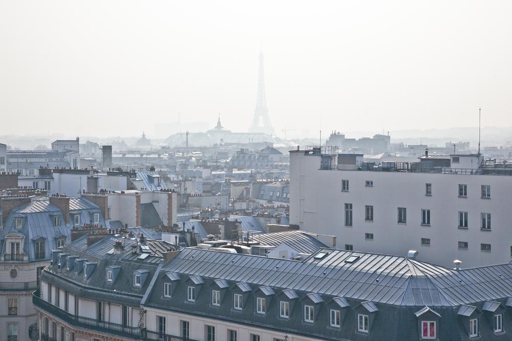 trisa-taro-paris-france-IMG_2508.jpg