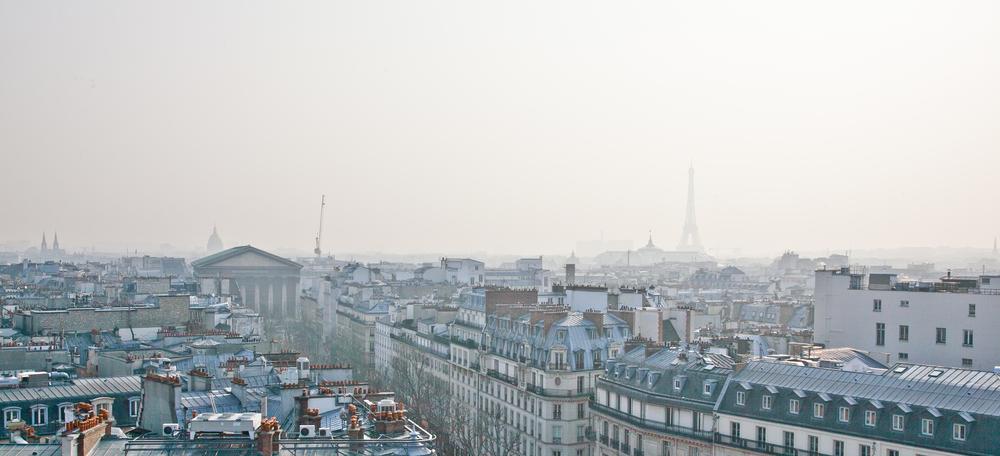trisa-taro-paris-france-IMG_2529.jpg