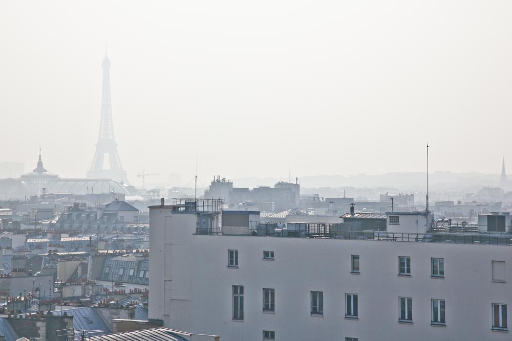 trisa-taro-paris-france-IMG_2512.jpg