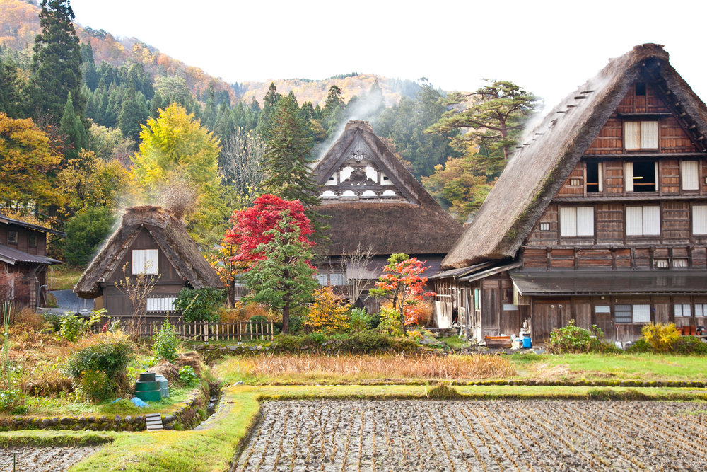 IMG_6934-shirakawa-go-takayama-japan-alps-trisa-taro.jpg