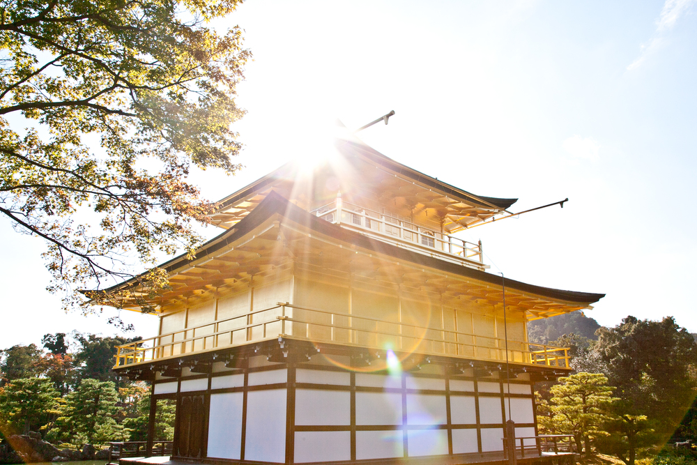 IMG_7049-kyoto-japan-trisa-taro.jpg