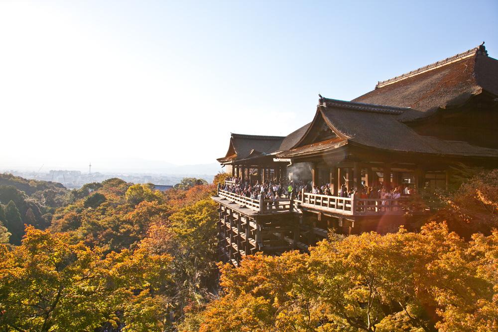IMG_7074-kyoto-japan-trisa-taro.jpg