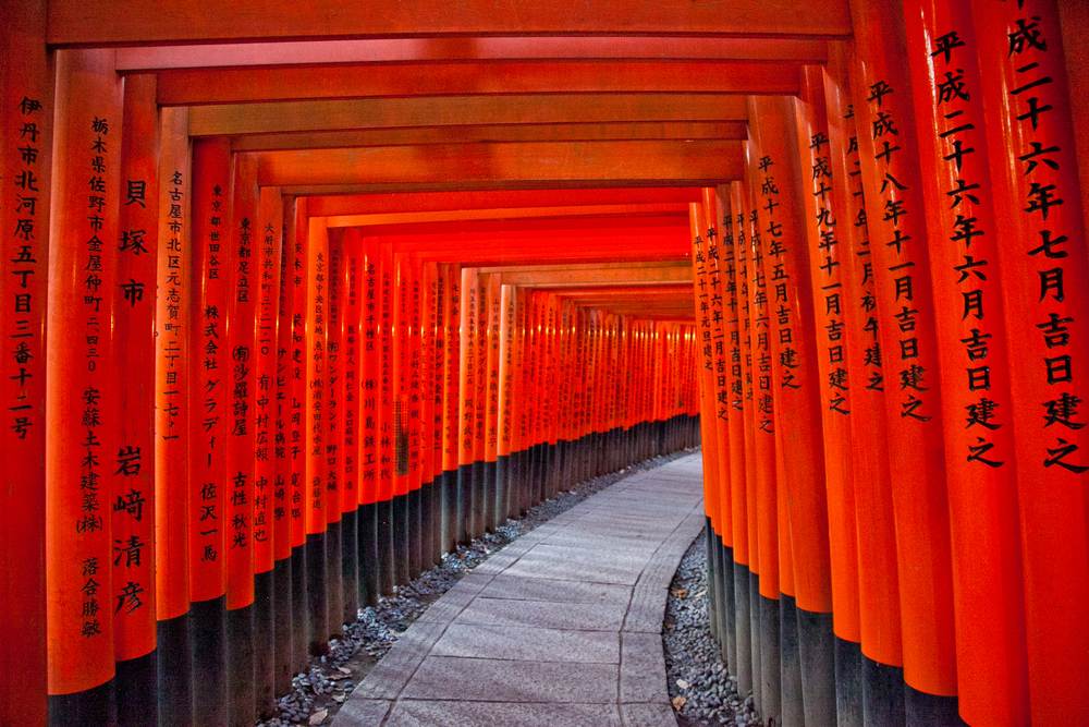 IMG_7112-kyoto-japan-trisa-taro.jpg