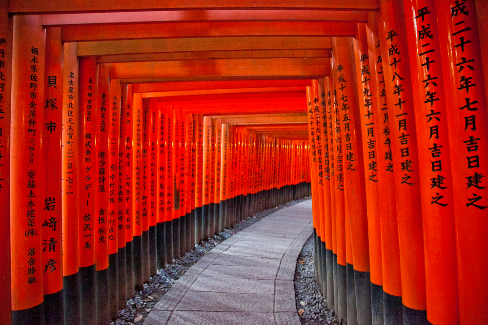 IMG_7114-kyoto-japan-trisa-taro.jpg