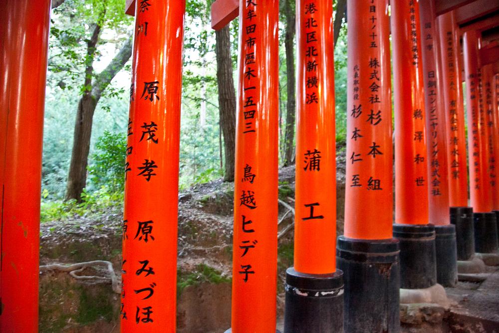 IMG_7125-kyoto-japan-trisa-taro.jpg