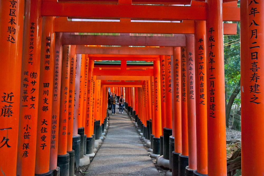 IMG_7135-kyoto-japan-trisa-taro.jpg