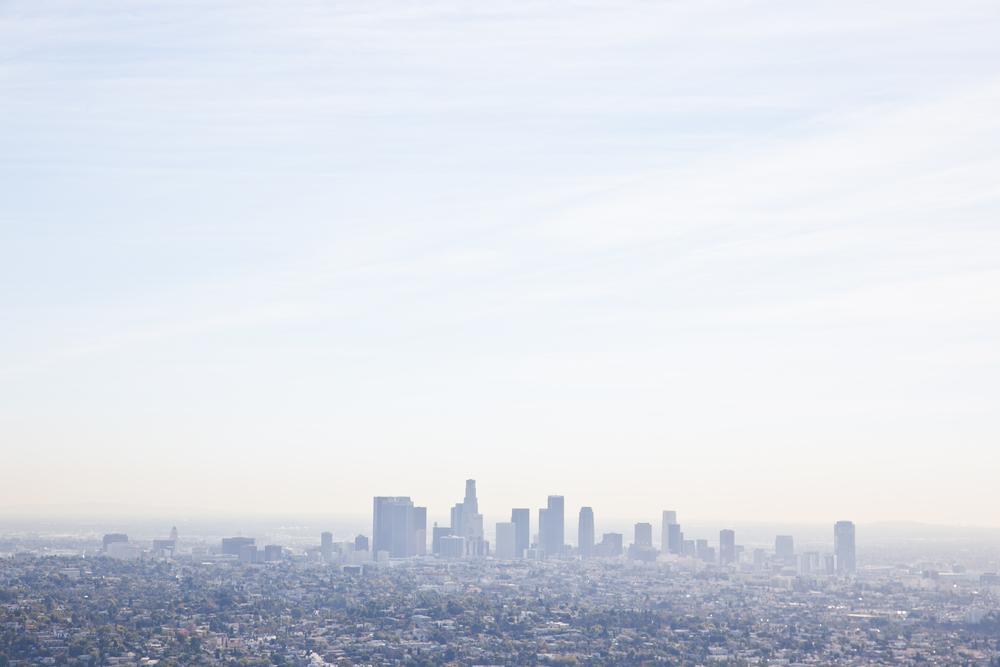 trisa-taro-los angeles-downtown-skyline.jpg