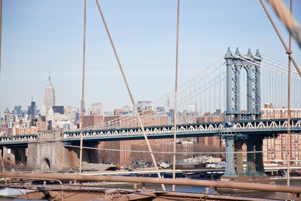 trisa-taro-view-from-brooklyn-bridge-new york city.jpg