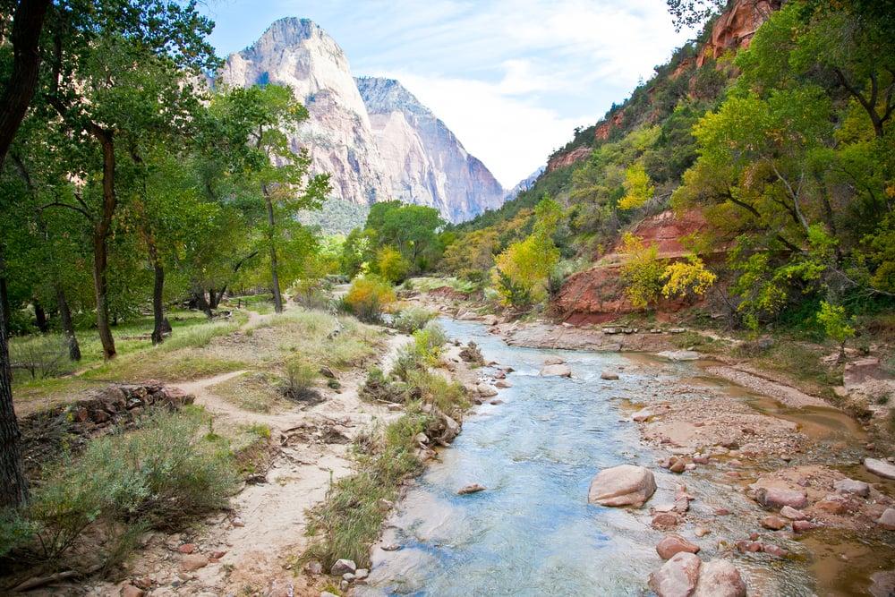 trisa-taro-zion-national-park-river-utah.jpg