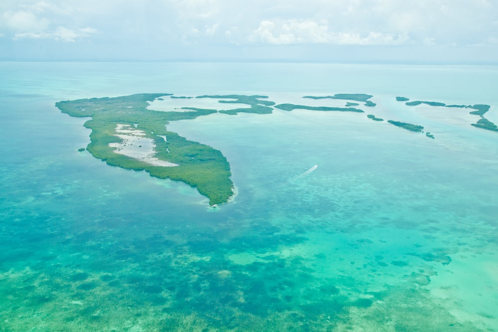 trisa-taro-view-from-plane-ambergris-caye-belize.jpg