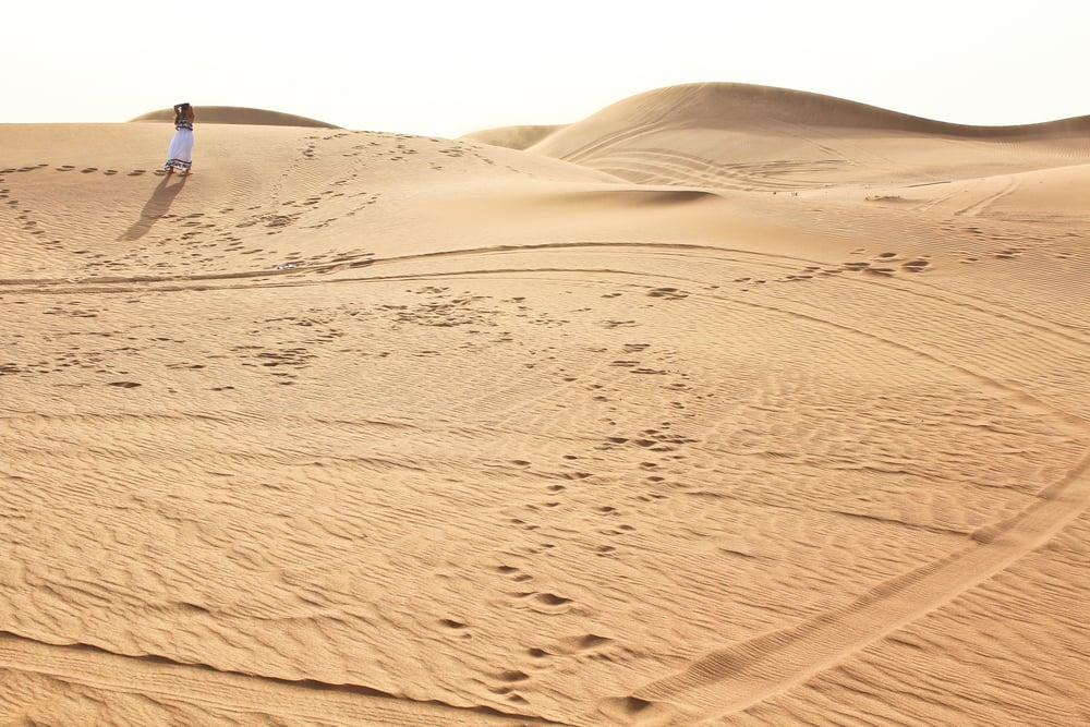 trisa-taro-desert-safari-dubai.jpg