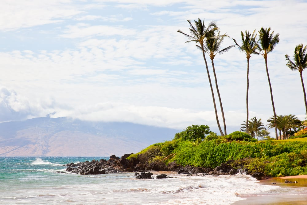 trisa-taro-beach-maui-hawaii.jpg