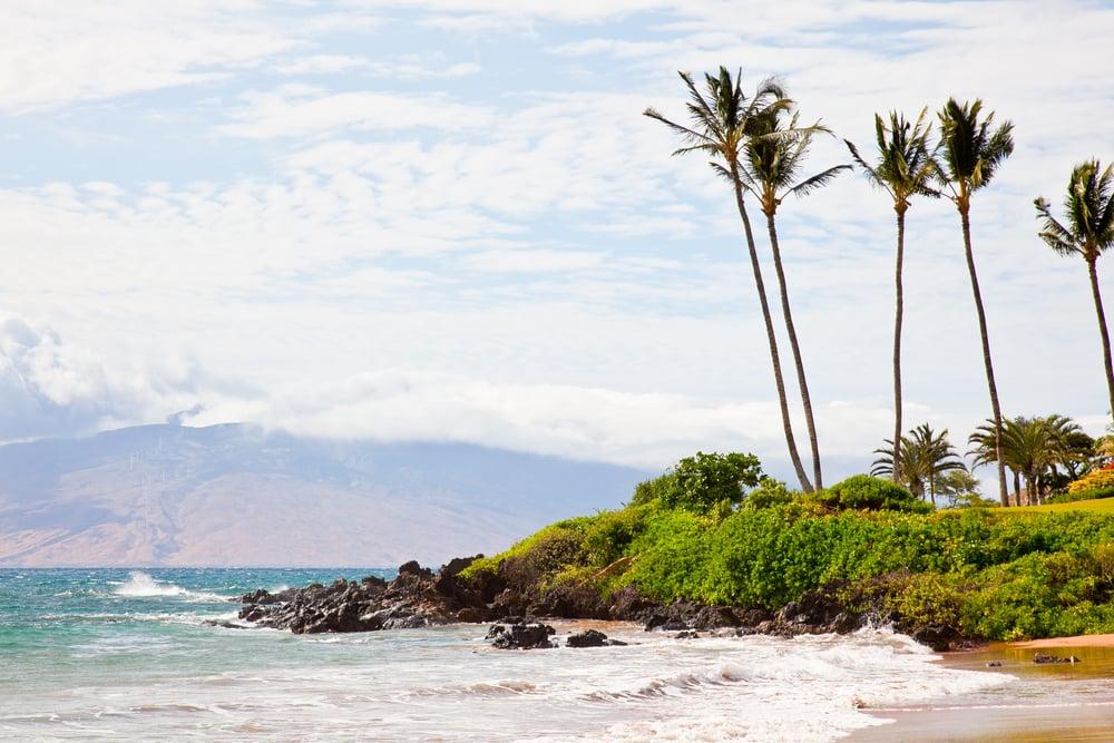 trisa-taro-beach-maui-hawaii.jpg