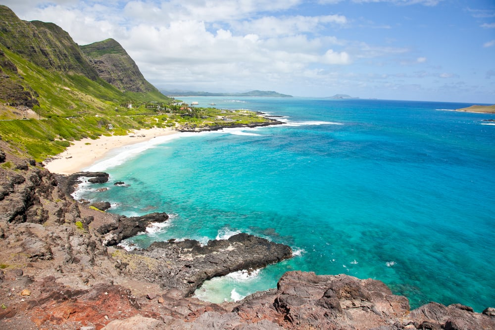 trisa-taro-makapuu-beach-lookout-oahu-hawaii.jpg