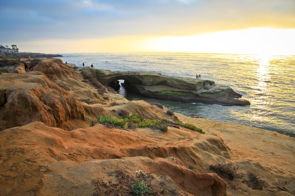 trisa-taro-sunset-cliffs-san diego.jpg