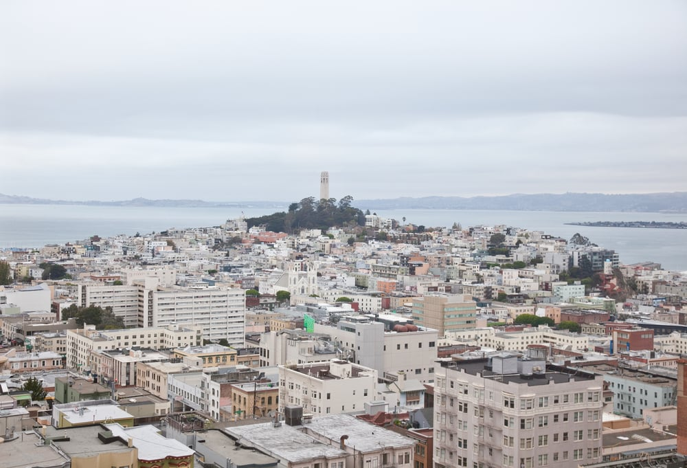 IMG_6244-san-francisco-california-trisa-taro.jpg