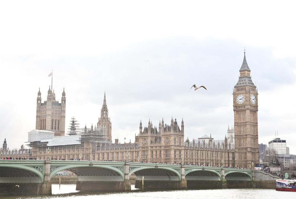 IMG_8621-london-england-trisa-taro.jpg