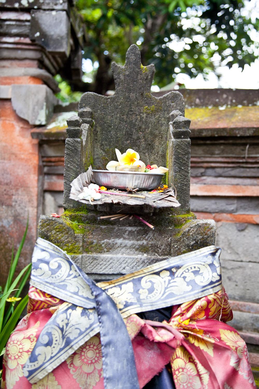 IMG_0123-ubud-bali-trisa-taro.jpg