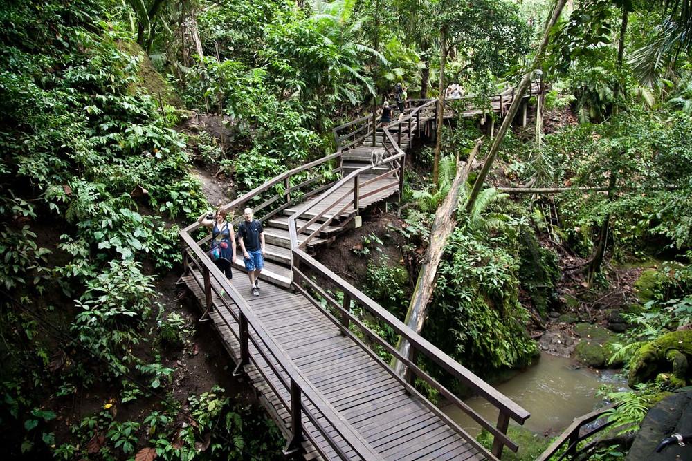 IMG_0216-ubud-bali-indonesia-trisa-taro.jpg