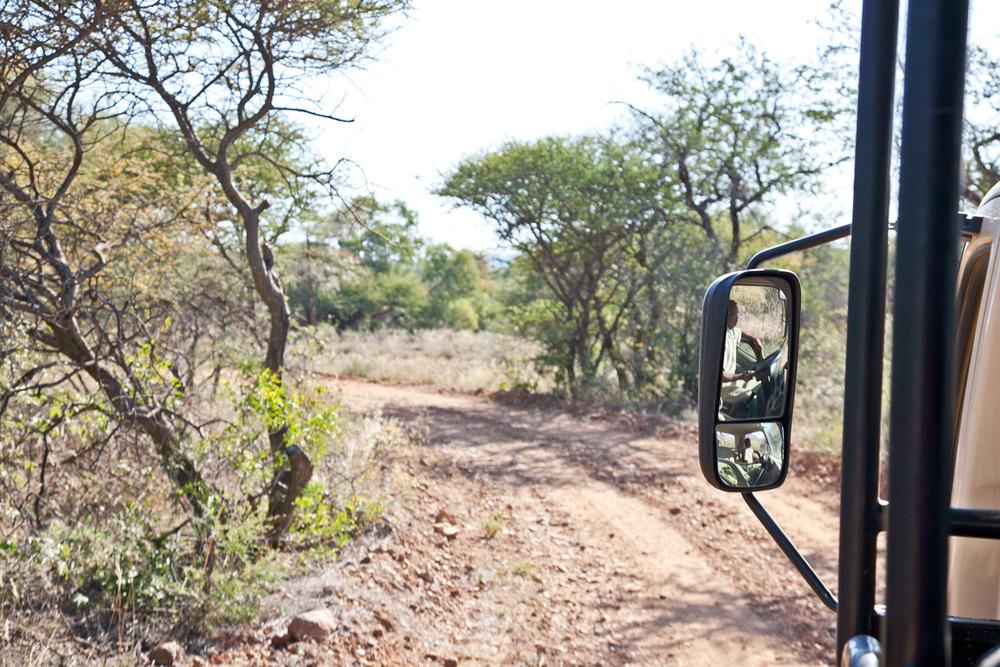 IMG_1414-gaborone-botswana-mokolodi-game-reserve-trisa-taro.jpg