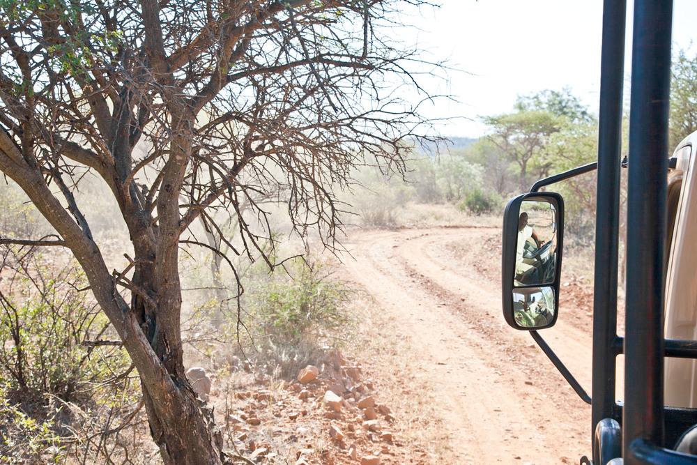IMG_1407-gaborone-botswana-mokolodi-game-reserve-trisa-taro.jpg