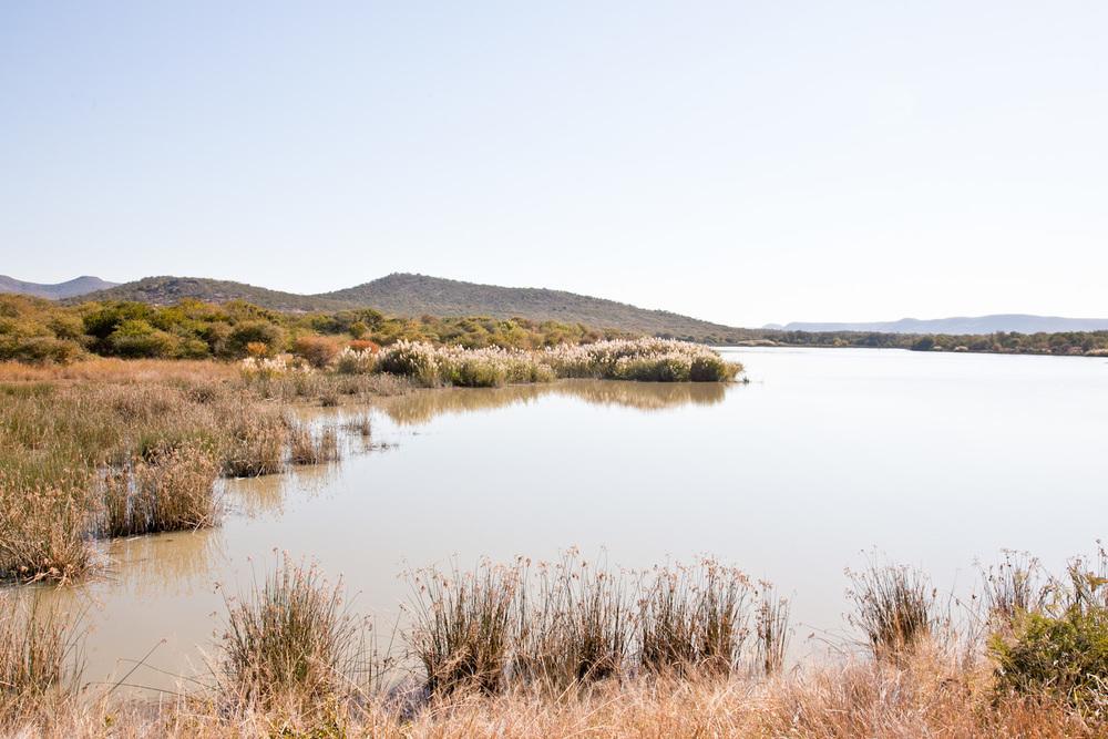 IMG_1421-gaborone-botswana-mokolodi-game-reserve-trisa-taro.jpg