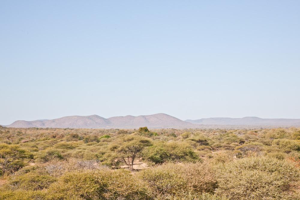 IMG_1423-gaborone-botswana-mokolodi-game-reserve-trisa-taro.jpg