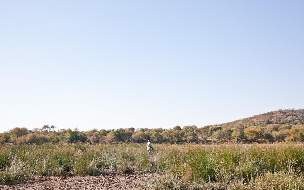 IMG_1437-gaborone-botswana-mokolodi-game-reserve-trisa-taro.jpg
