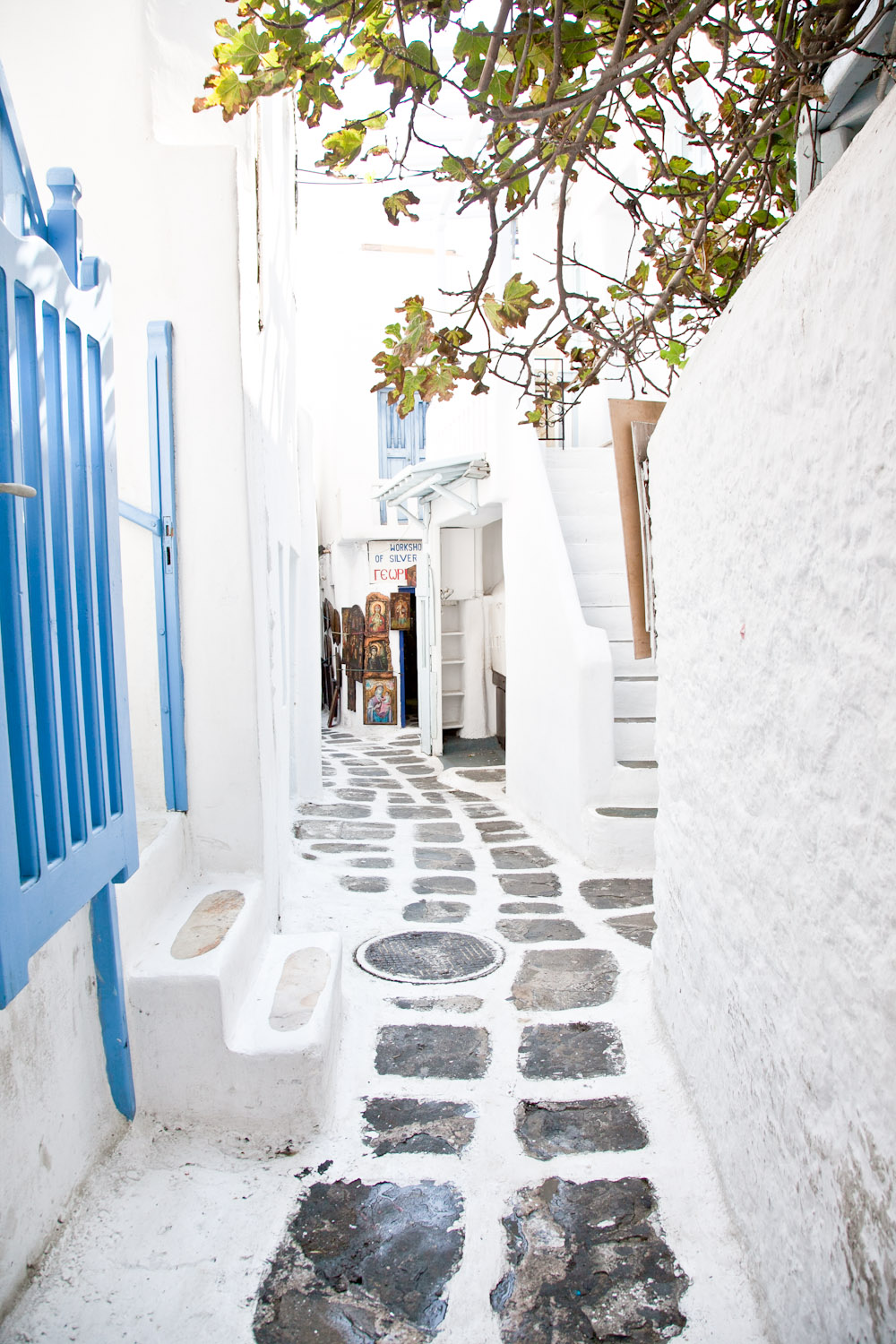 IMG_3816-mykonos-greece-cruise-day-trip-travel-trisa-taro.jpg