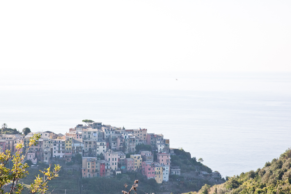 IMG_6447-hiking-corniglia-to-vernazza-cinque-terre-italy-trisa-taro-the-free-passport.jpg