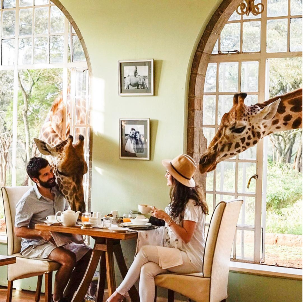 Giraffe Manor via Out of Office.World