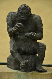 monkey-1538315_1280.jpg